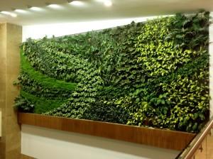 Cubiertas y muros verdes land studios for Jardines verticales ecuador