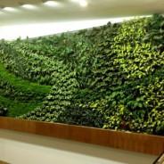 Acuerdo comercial para la implantación de Muros Verdes